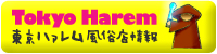 東京ハァレム風俗店情報